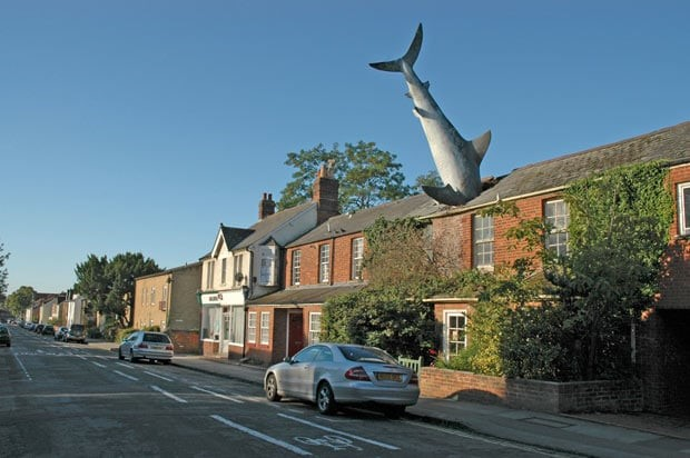 Photo of a residential street in Headington, Oxford. A large model shark is sticking out of one of the roofs.